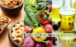 Особенности гипохолестериновой диеты