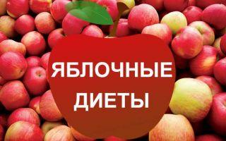 Все виды яблочных диет