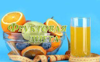 Разновидности, отзывы и меню фруктовых диет