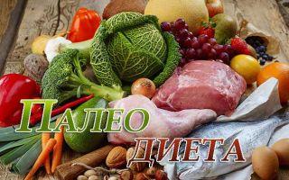 Первобытная палеолитическая диета