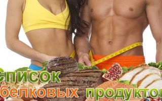 Список белковых продуктов