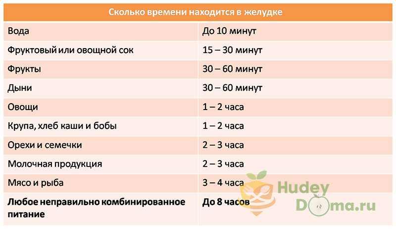 Время переваривания продуктов в желудке