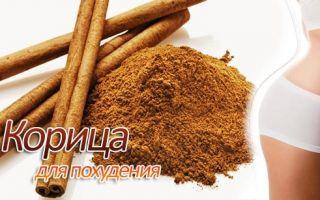 Корица с кефиром и медом — рецепты для похудения